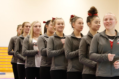 Gymnastcs vs Dekalb 20190213-0018