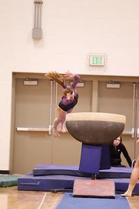 Gymnastcs vs Dekalb 20190213-0062