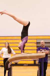 Gymnastcs vs Dekalb 20190213-0075