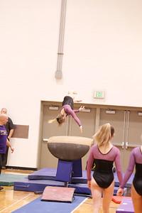 Gymnastcs vs Dekalb 20190213-0055