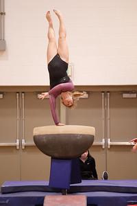 Gymnastcs vs Dekalb 20190213-0067
