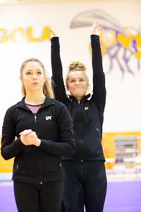 Gymnastcs vs Dekalb 20190213-0025