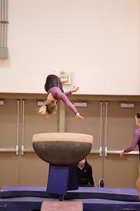 Gymnastcs vs Dekalb 20190213-0069