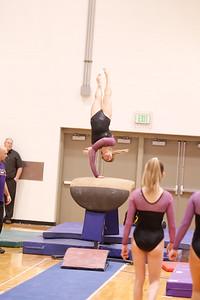Gymnastcs vs Dekalb 20190213-0053
