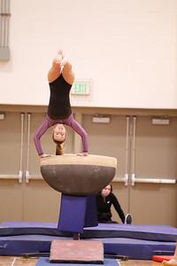 Gymnastcs vs Dekalb 20190213-0058