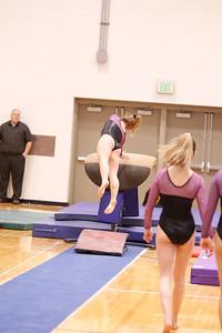 Gymnastcs vs Dekalb 20190213-0048