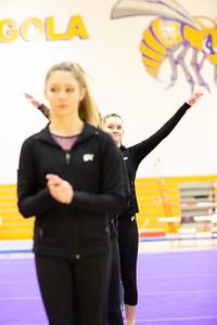 Gymnastcs vs Dekalb 20190213-0022