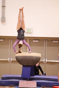 Gymnastcs vs Dekalb 20190213-0059