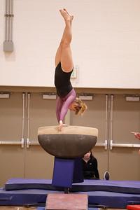Gymnastcs vs Dekalb 20190213-0066