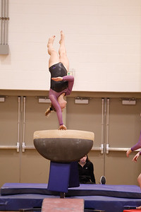Gymnastcs vs Dekalb 20190213-0068