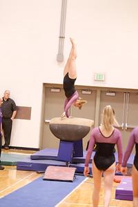 Gymnastcs vs Dekalb 20190213-0052