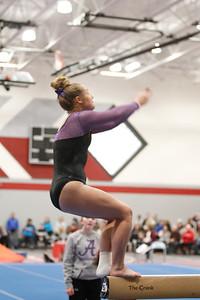 Gymnastics at Regional 20190302-0074
