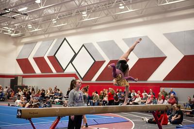 Gymnastics at Regional 20190302-0098