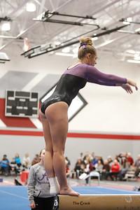 Gymnastics at Regional 20190302-0073