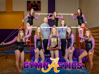 Gymnastics Sectional Photos-0003-2