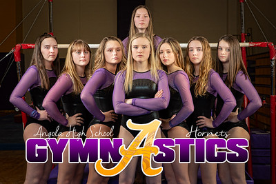 Gymnastics Sectional Photos-0013