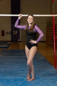 Gymnastics Sectional Photos-0018