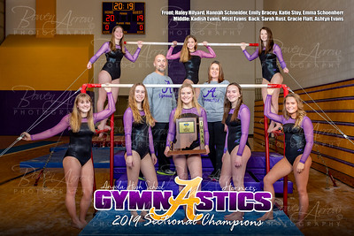 Gymnastics Sectional Photos-0003-3