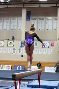 Gymnastics at State 20190309-0061