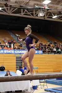 Gymnastics at State 20190309-0093