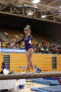 Gymnastics at State 20190309-0081
