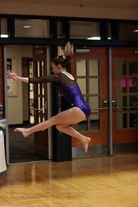 Gymnastics at State 20190309-0010
