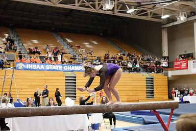 Gymnastics at State 20190309-0109