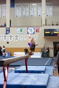 Gymnastics at State 20190309-0071