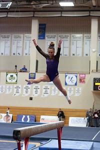 Gymnastics at State 20190309-0065