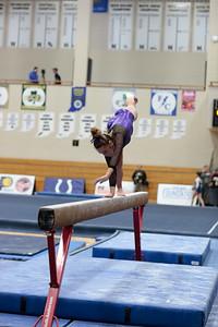 Gymnastics at State 20190309-0055