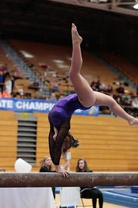 Gymnastics at State 20190309-0123