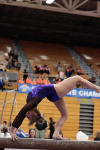 Gymnastics at State 20190309-0131