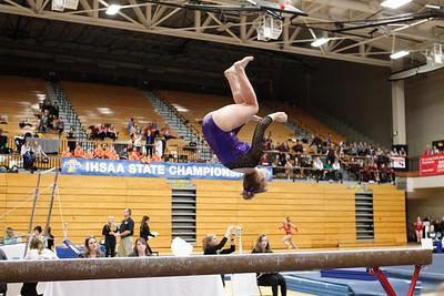 Gymnastics at State 20190309-0107
