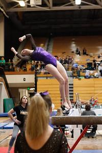 Gymnastics at State 20190309-0046