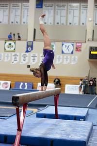 Gymnastics at State 20190309-0056