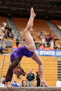 Gymnastics at State 20190309-0132