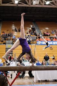 Gymnastics at State 20190309-0042