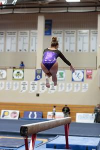 Gymnastics at State 20190309-0060