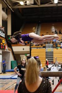 Gymnastics at State 20190309-0047