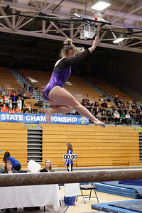 Gymnastics at State 20190309-0091