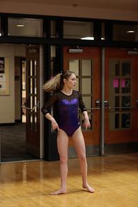 Gymnastics at State 20190309-0011