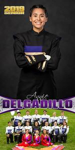 Band Annie Delgadillo Banner
