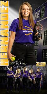 Alyssa Hernandez Softball Banner