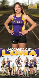 Michelle Luna Track Banner