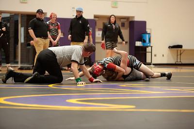 AHS Wrestling vs Lakeland 20190103-0068