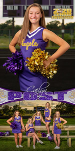 Cheer Cailyn Post Banner