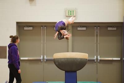 Gymnastics vs Wayne SS 20200122-0013