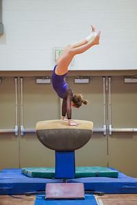 Gymnastics vs Wayne SS 20200122-0057