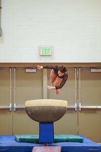 Gymnastics vs Wayne SS 20200122-0030