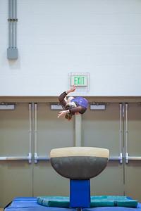 Gymnastics vs Wayne SS 20200122-0048